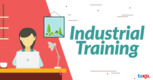 Internship / Industrial training